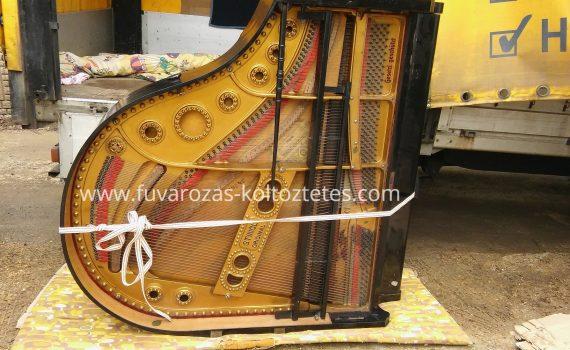 zongoraszallitas-erden-5
